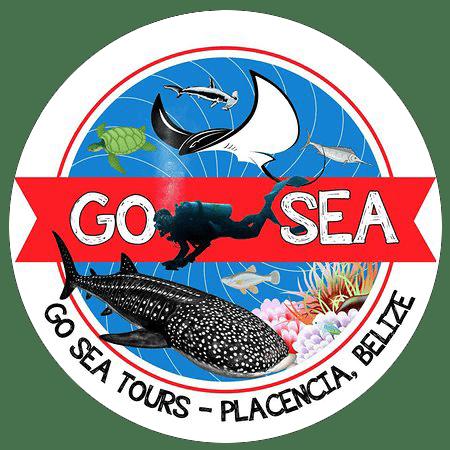 go-sea-tours