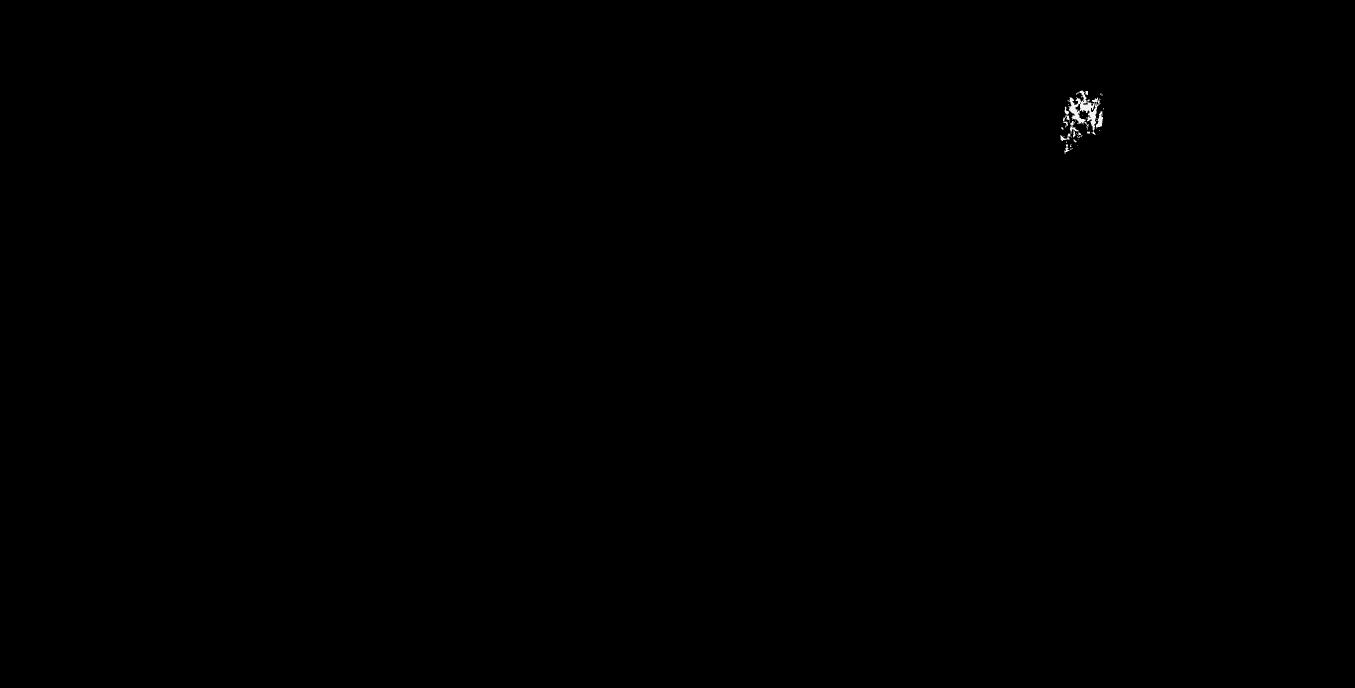 ChaChi's_logo_v1_cmr-01